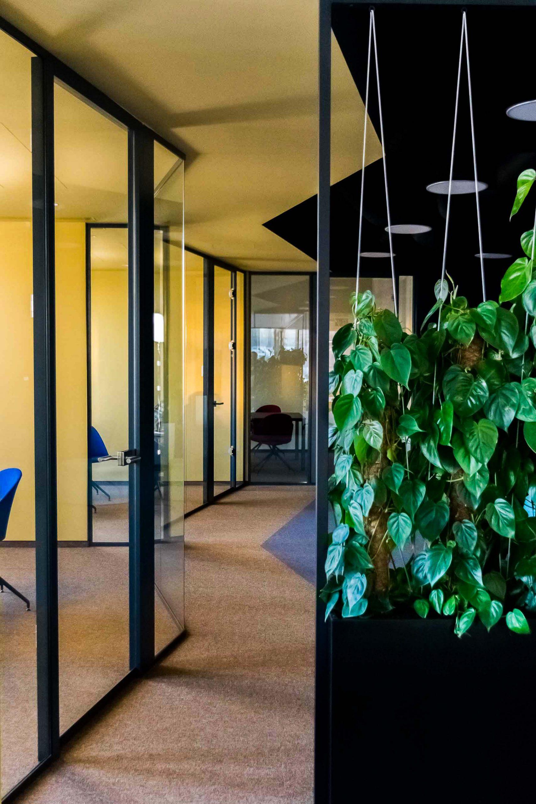 Kancelárske priestory EXXETA, Bratislava, vstup zeleň, VAUarchitects